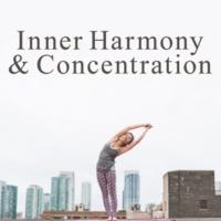 Meditação e Espiritualidade Musica Academia Mantra