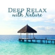 Spa Music Paradise Deep Relax with Nature - Inner Zen, Harmony, Relax, Pure Spa, Classic Massage, Deep Sleep, Meditation, Wellness