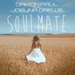 Paul  Damon Soulmate