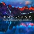 Outside Broadcast Recordings Healing Sounds for Peaceful Mind - Rest with Nature Sounds, New Age Relaxation, Mind Rest, Spirit Calmness
