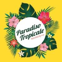 Alessandro Travaglia Paradiso Tropicale