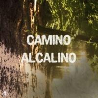 Silvina Romero Camino Alcalino (Original Mix)