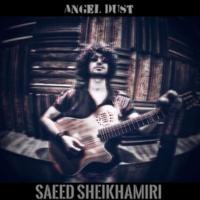 Saeed SheikhAmiri Angel Dust