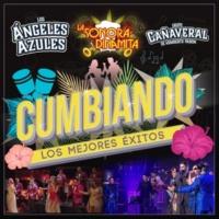 Los Ángeles Azules/Grupo Cañaveral De Humberto Pabón El Listón De Tu Pelo (feat.Grupo Cañaveral De Humberto Pabón) [Live]
