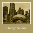 Various Artists Chicago Nu Jazz