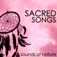 Sacred Music Collectors Rain Forest and Flute