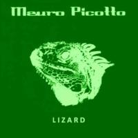 Mauro Picotto Lizard  (Tall Paul Edit)