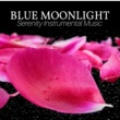 Blue Moonlight Experience Chinese Harp (Zazen Meditation)