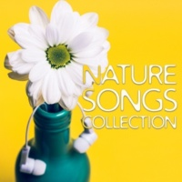 Nature Sounds Artists Bliss (Nature Sounds)
