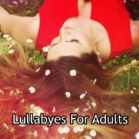 spa, relaxation and dreams|Deep Sleep Music Academy|Lullabyes Aquatic Embrace