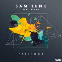 Sam Junk/Sehya Feelings