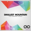 Smallest Mountain A Serene Cessation