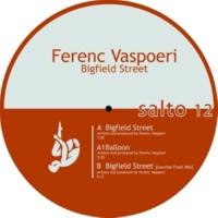 Ferenc Vaspoeri Bigfield Street (Laurine Frost Remix)