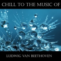 Ludwig Van Beethoven Symphony No- 2 in D Major, Op- 36 II- Larghetto