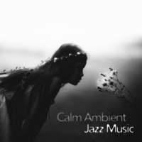 Piano Bar Music Oasis Ambient Relaxation