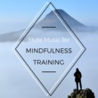 Flute Records Flute Music for Mindfulness Training: Zen Meditation for Deep Sleep, Soothing Sounds for Relaxation, Gentle Flute Music