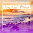 Dancefloor Hits 2015 Tropical Vibes - Exotic Chill Out Music, Summertime, Beach Music, Relax, Deep Chill Out