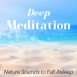 Ali Farka Blondy Deep Meditation - Find Inner Peace, Best Sleep Music, Nature Sounds to Fall Asleep, Relax the Mind with Singing Birds