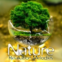 Nature Sounds Stress Relief