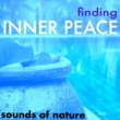 Reiki Nausicaa Finding Inner Peace - Reiki Treatment & Zen Meditation Sounds of Nature, Buddhist Songs