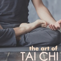 Tai Chi Chuan White Noise Machine