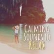 Beautiful Sunset Beach Chillout Music Collection