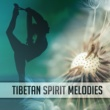 Chinese Relaxation and Meditation Tibetan Spirit Melodies - Music for Mediation, Yoga, Contemplation, Zen, Relaxation
