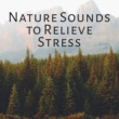 Nature Tribe Nature Sounds to Relieve Stress - Easy Sounds, Calming Waves, Healing Memories, Peaceful Music