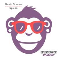 David Square Spleen