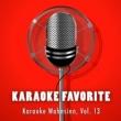 Various Artists Karaoke Wahnsinn, Vol. 13