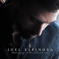 Joel Espinosa Ahora Que Ya No Te Vuelva a Ver