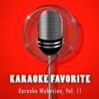 Various Artists Karaoke Wahnsinn, Vol. 11