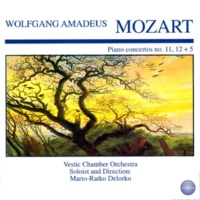 Vestic Chamber Orchestra&Mario-Ratko Delorko Concerto for Piano and Orchestra No. 5 in D Major, KV 175: I. Allegro