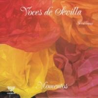 Voces de Sevilla Al Atardecer