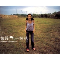 Cass Phang Wo Di Mei Li Yu Ai Chou (Album Version)