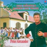 Peter Alexander Mondschein an der Eger