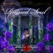 Charon Project Ruined Soul