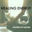 The Healing Guru Healing Energy
