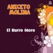 Aniceto Molina El Burro Moro