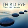 Chakra Meditation Balancing Chakra Activation Third Eye