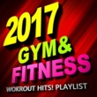 The Gym Allstars Shape of you (Workout Fitness Mix)