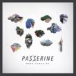 Passerine More Human