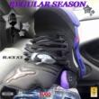 Black Ice Regular Season