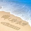 チェスマイカ 輝く砂浜!!!!