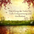 Krishna Lemay Zen - Progressive Entspannung