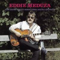 Eddie Meduza Dom dåraktigaste dumheterna digitalt (Röven 2)