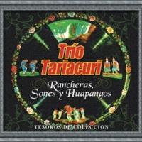 Trío Tariácuri Tesoros De Coleccion - Trio Tariacuri