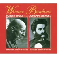 Robert Stolz Wiener Musik Vol. 6