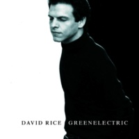 David Rice greenelectric