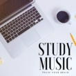 Calm Stress Oasis Relief Study Music